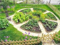 1сад и огород